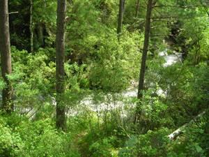 Река берущая начало на горной вершине